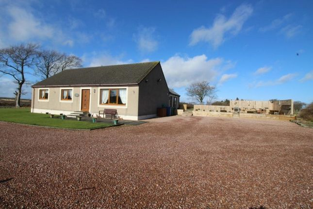 Thumbnail Bungalow for sale in Cameron, St Andrews