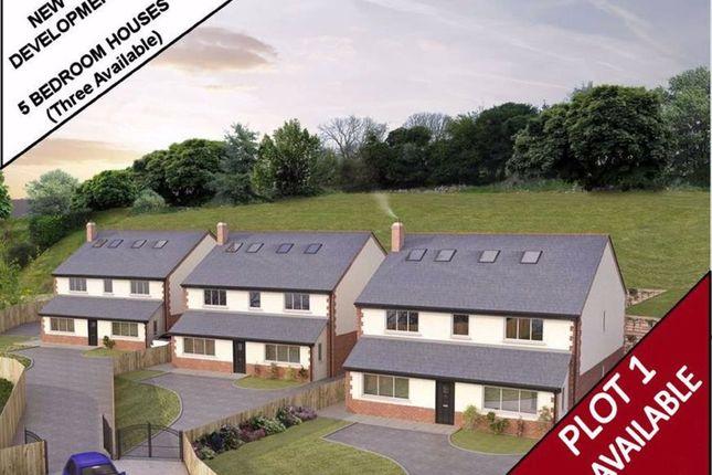 Thumbnail 5 bed detached house for sale in Ffordd Y Faenol Fach, Holywell, Flintshire