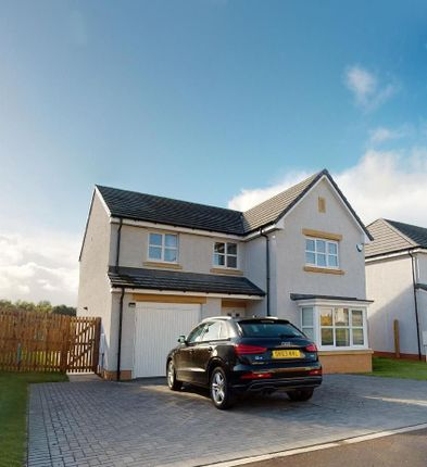 Thumbnail Detached house to rent in Pailis Crescent, Bothwell, Glasgow