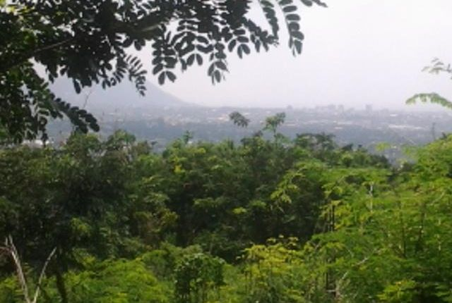 Land for sale in Kingston, Saint Andrew, Jamaica