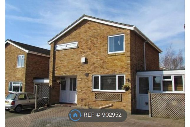 Thumbnail Detached house to rent in Eltham Avenue, Reading