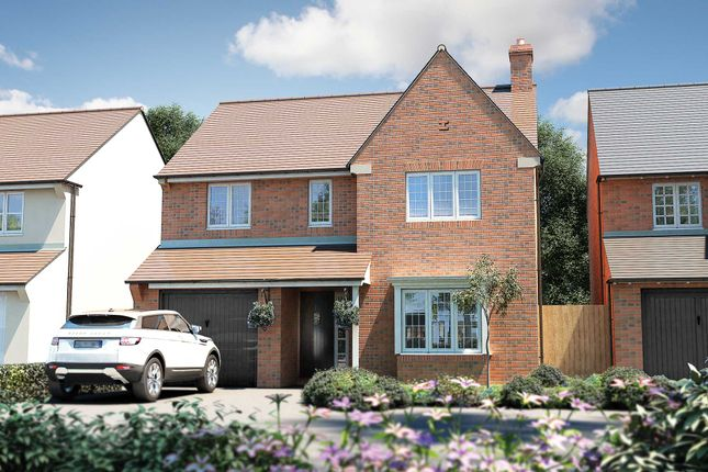 "Thumbnail Detached house for sale in ""The Buckland"" at Roman Road, Bobblestock, Hereford"