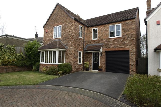 Thumbnail Detached house for sale in Ecklands, Millhouse Green, Sheffield