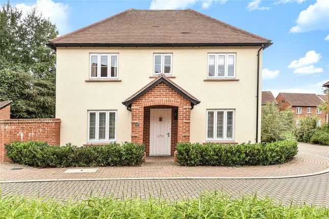 Thumbnail Detached house to rent in Bakeland Gardens, Alresford, Hampshire