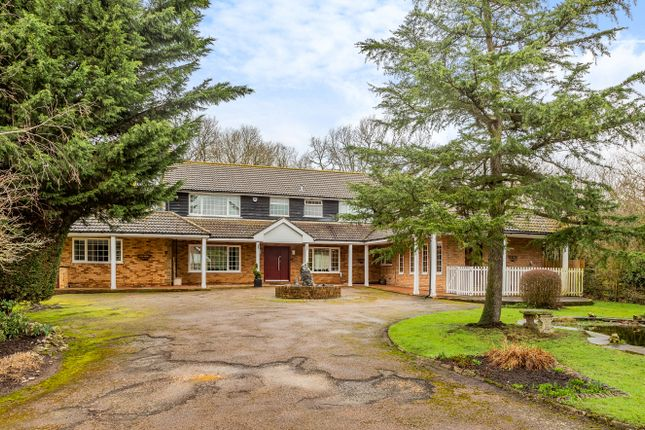 Thumbnail Detached house for sale in Foxes Lane, North Mymms, Hatfield