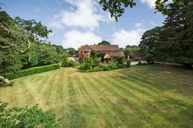 Thumbnail Detached house for sale in Sowden Brake, Hulham Road, Exmouth