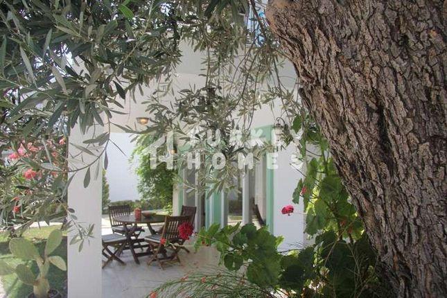 Yalikavak Apartment - Minutes From Palmarina - Mature Gardens