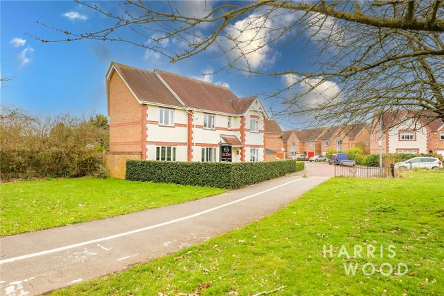 Thumbnail Detached house for sale in Tumulus Way, Colchester, Essex