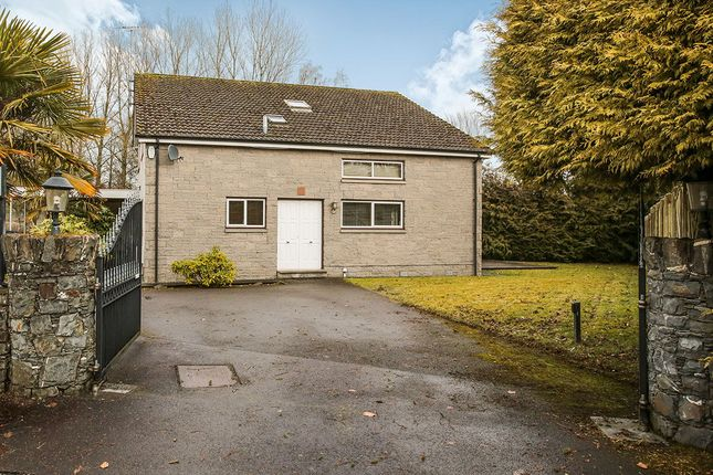 Thumbnail Detached house for sale in Nunholm Park, Dumfries