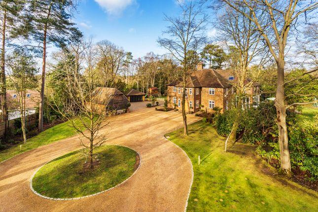 Thumbnail Detached house for sale in Longdown Road, Lower Bourne, Farnham
