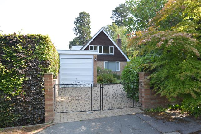 Thumbnail Detached house to rent in Essex Close, Tunbridge Wells