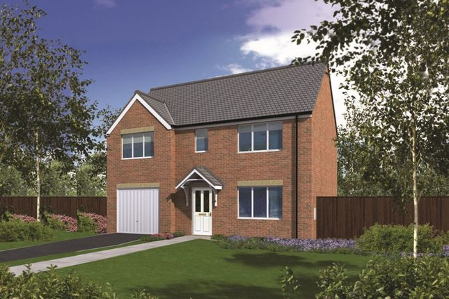 "Thumbnail Detached house for sale in ""The Winster"" at Coquet Enterprise Park, Amble, Morpeth"