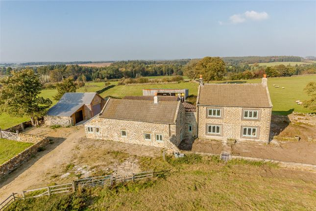Thumbnail Detached house for sale in Grantley, Ripon, North Yorkshire
