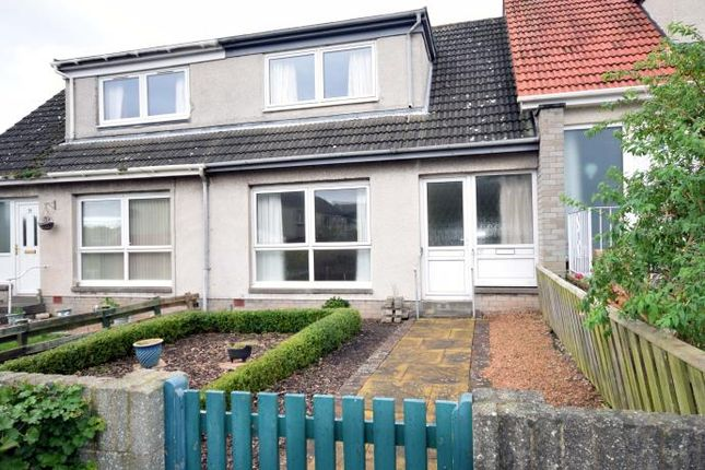 Thumbnail Terraced house to rent in St. Nicholas Street, St. Andrews