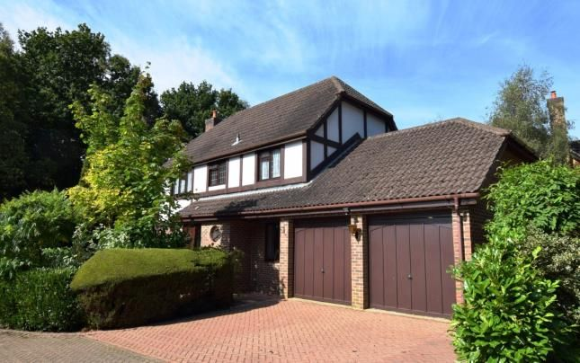 Thumbnail Detached house for sale in Elm Way, Heathfield, East Sussex, United Kingdom
