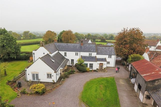 Thumbnail Detached house for sale in Cedar Tree House, West Stoughton, Wedmore, Somerset