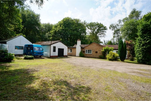 Thumbnail Detached bungalow for sale in Old Wood, Skellingthorpe