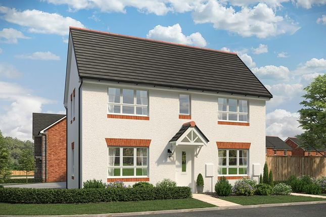 """Thumbnail Detached house for sale in """"Tone"""" at Sandys Moor, Wiveliscombe, Taunton"""