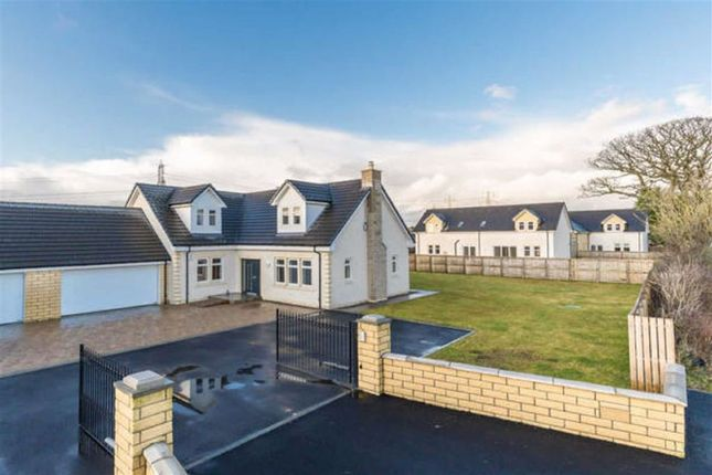 Thumbnail Detached house for sale in The Oaks, Moss Road, Falkirk