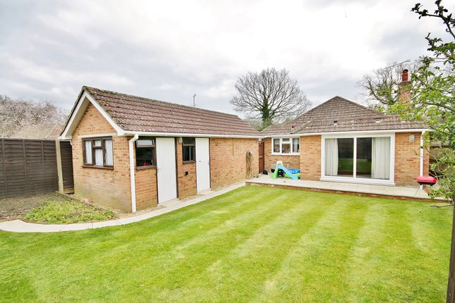 Thumbnail Detached bungalow for sale in Clews Lane, Bisley, Woking