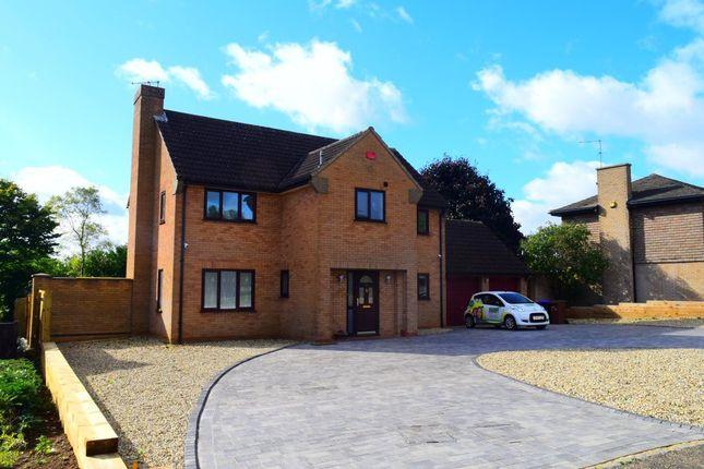 Thumbnail Detached house to rent in Rowlandson Close, Abington, Northampton
