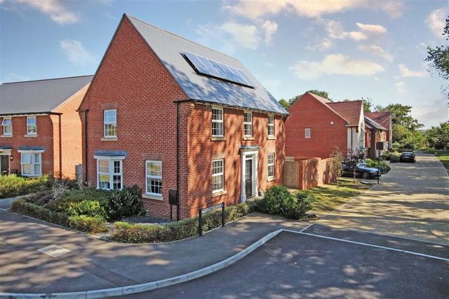 4 bed detached house for sale in Pillman Place, Angmering, West Sussex BN16