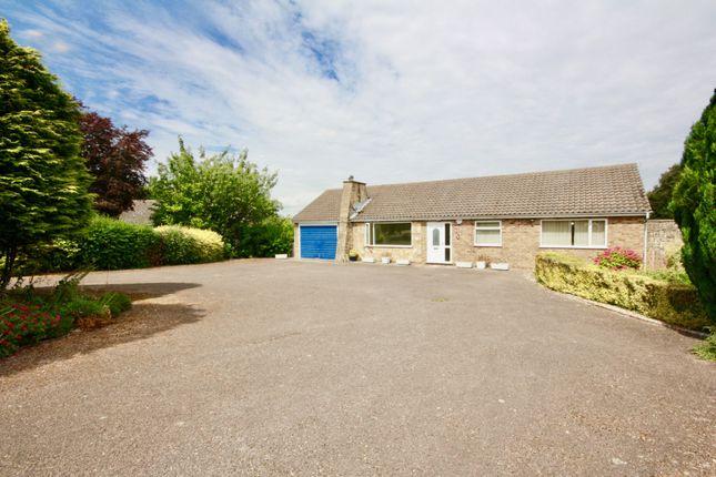 Thumbnail Bungalow to rent in Ridgeview Road, Bracebridge Heath, Lincoln