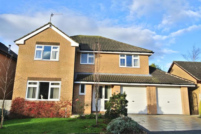 Thumbnail Detached house for sale in Horrocksford Way, Westbourne Park, Lancaster