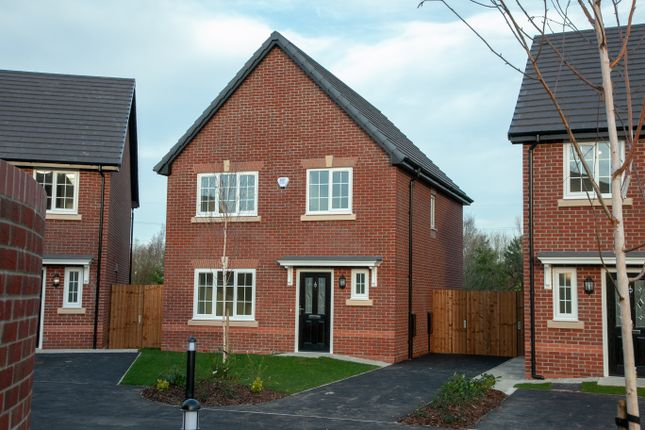 Thumbnail Detached house for sale in Carr Lane, Hambleton