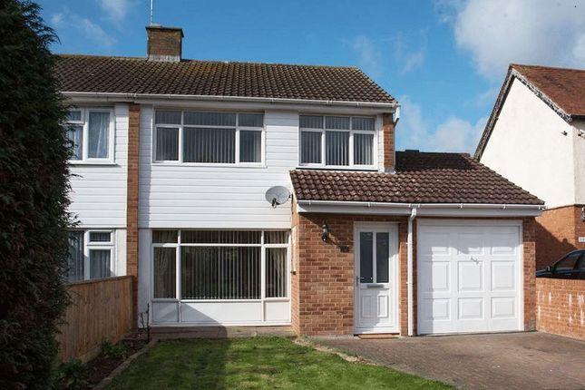 Thumbnail Semi-detached house to rent in Newton Road, Bletchley, Milton Keynes