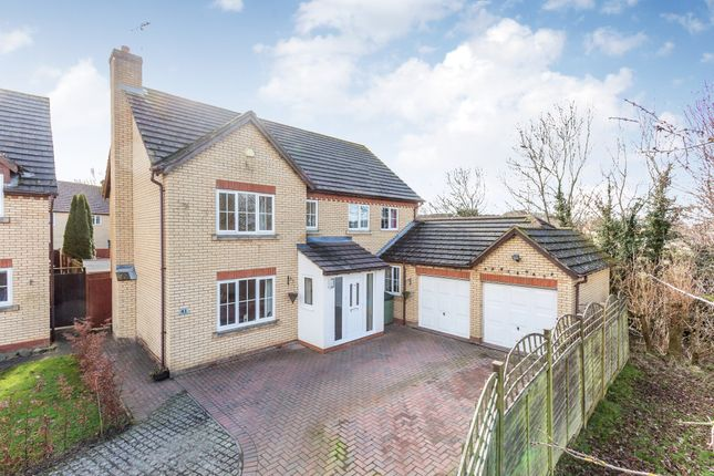 Thumbnail Detached house for sale in Fitzwilliam Leys, Higham Ferrers, Rushden