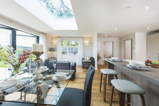 Thumbnail Detached house for sale in Main Road, Nutbourne, Chichester