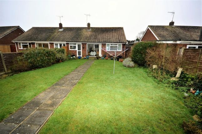 Thumbnail Semi-detached bungalow for sale in Sycamore Close, Lydd