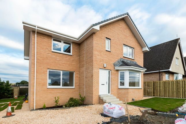 Thumbnail Detached house for sale in Chestnut Grove, Gartcosh, Glasgow