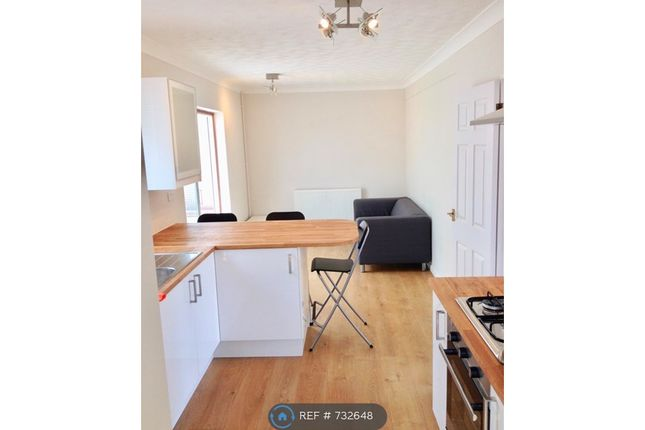Thumbnail Semi-detached house to rent in Walpole Road, Winchester