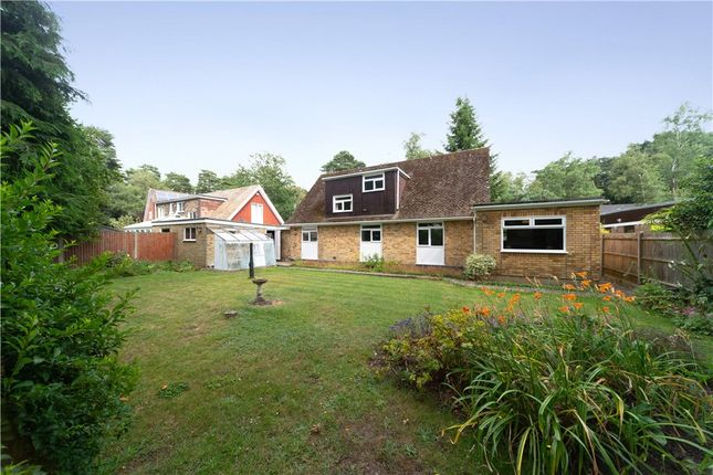 Thumbnail Link-detached house for sale in Edgcumbe Park Drive, Crowthorne, Berkshire