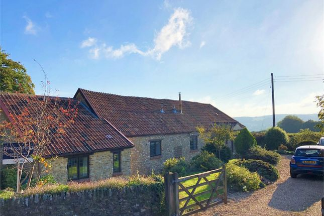 Thumbnail Detached house to rent in Pound Lane, Buckland St Mary, Chard