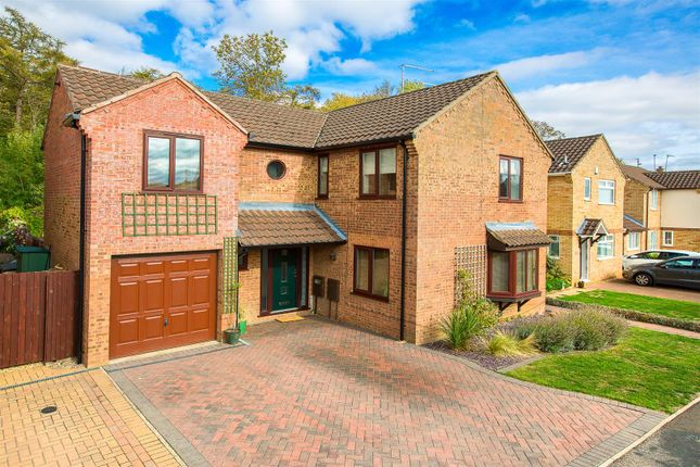 Thumbnail Detached house for sale in Larkwood Close, Kettering