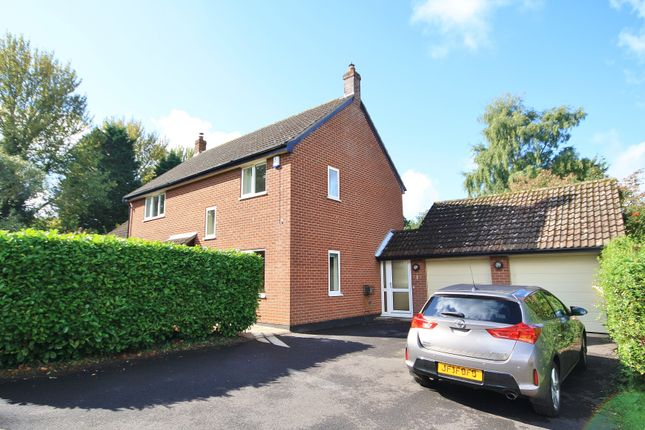 Thumbnail Property to rent in Beech Drive, Strumpshaw, Norwich