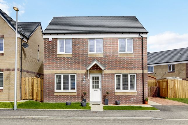 """Thumbnail Detached house for sale in """"The Ettrick"""" at Lusitania Gardens, Larkhall"""