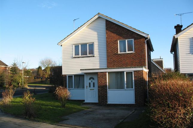 Thumbnail Detached house to rent in Salisbury Road, Canterbury
