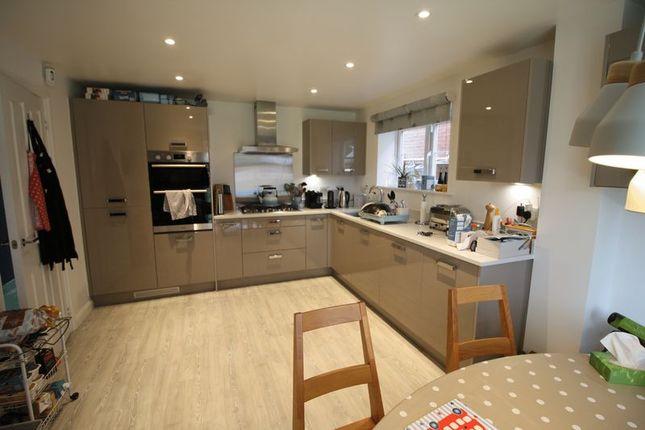 Thumbnail Detached house to rent in Fieldfare Close, Hemel Hempstead