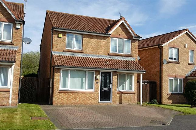 Thumbnail Detached house to rent in Meadowbank, Southfields, Dudley