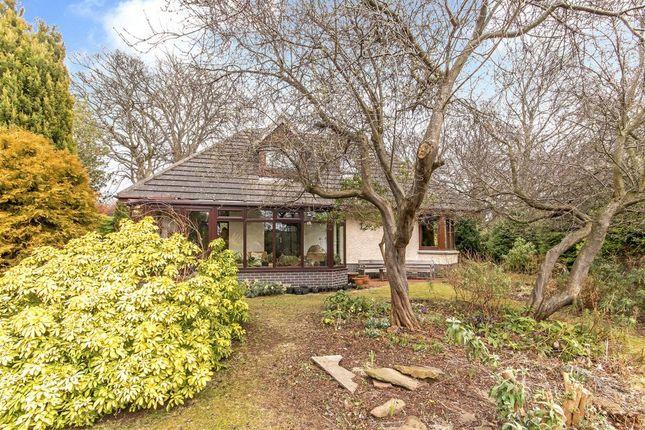 Thumbnail Detached bungalow for sale in Netherhaven, 63A Belhaven Road, Belhaven, Dunbar