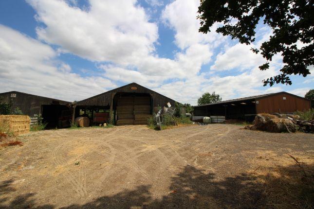 Thumbnail Land for sale in Burnt Lodge Lane, Ticehurst