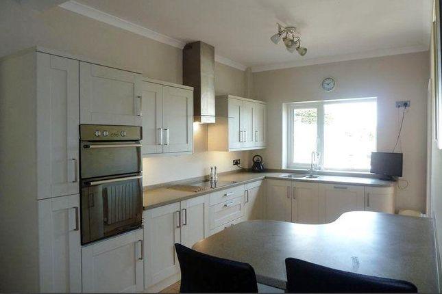 Thumbnail Property to rent in Shorton Road, Preston, Paignton