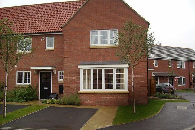 Thumbnail Semi-detached house to rent in Moorhen Close, Market Rasen