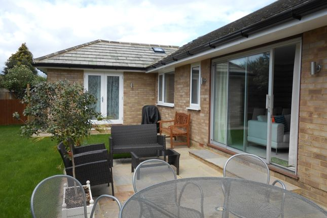 Thumbnail Bungalow to rent in Riverview Road, Ewell, Epsom