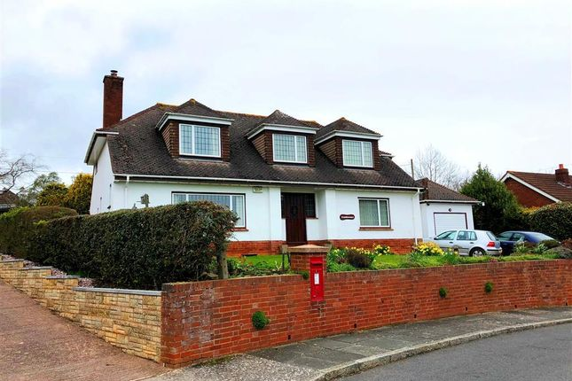 Thumbnail Property to rent in Rosebank Crescent, Exeter