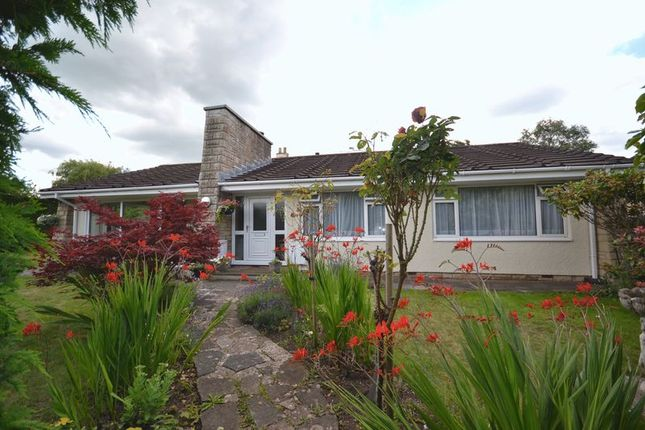 Thumbnail Bungalow for sale in Chequers Close, Oldland Common, Bristol